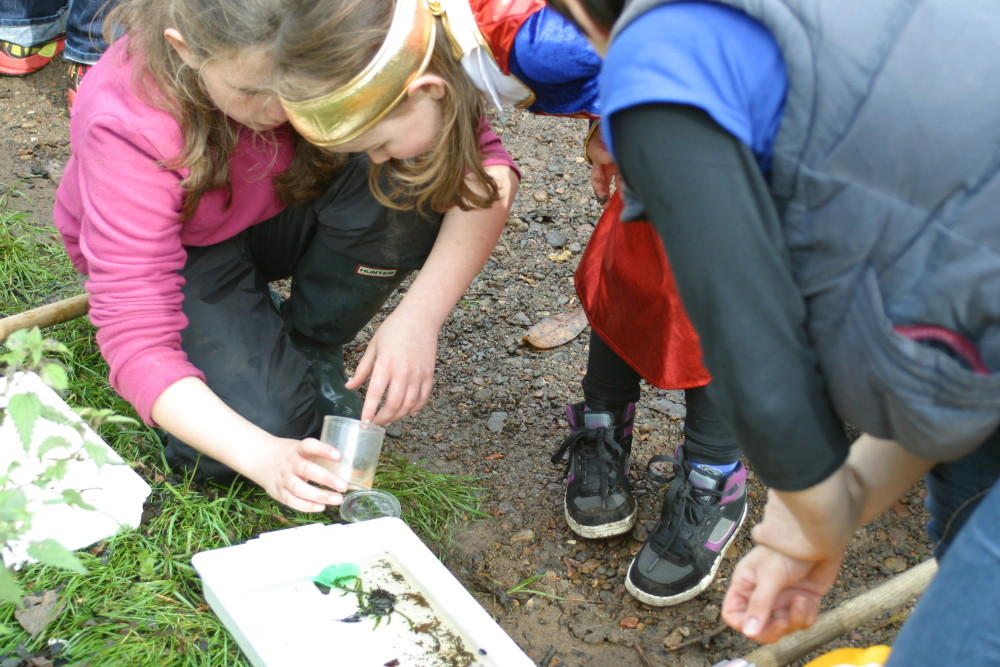 Science in the Glen pond dipping