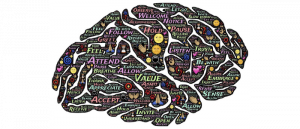 drawing of a brain filled with words relating to wellbeing