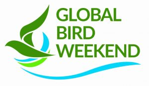global bird weekend